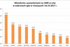 mieszk_z_pozw_na_1000mcow_aglo_I-XI_2017-e1514581253216